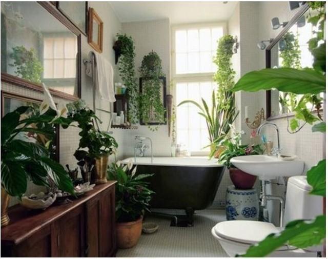 Живые растения украшают ванную комнату