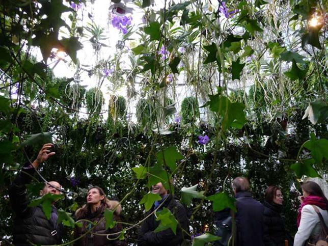 Здание из пузырей: растения в пузырях в Париже