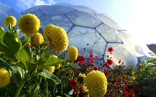 Здание из пузырей: проект Эдема