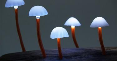 lamp-mushroom-1