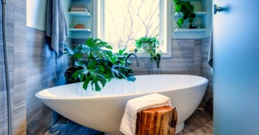 live_plants_in_the_bathroom-01