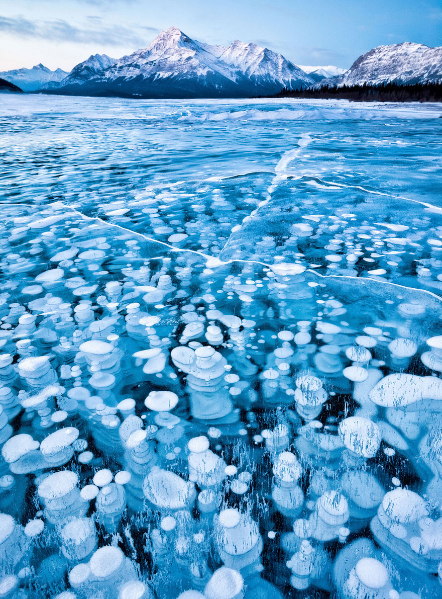Пузырьки подо льдом озера Abraham в Канаде