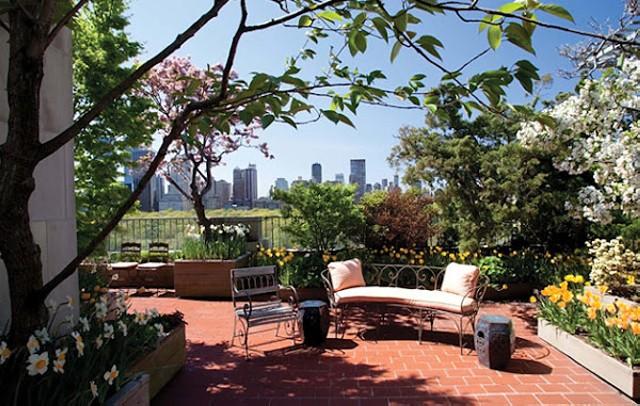 Скамейка для одыха в саду на крыше дома