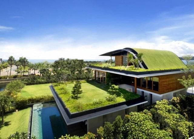Газон в оформление крыши дома