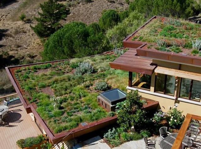 Крыша дома в растениях