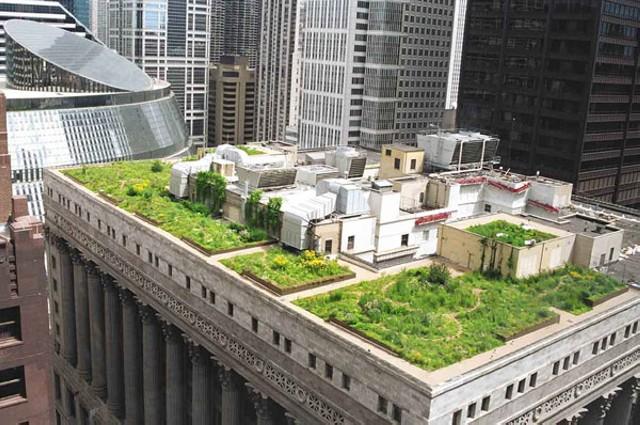Вид из далека озелененной крыши дома