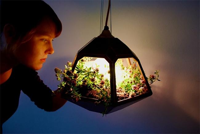 Дизайн подвесного фонаря в форме пирамиды с цветами внутри