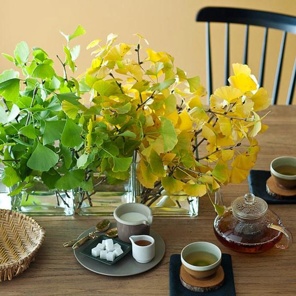 Зеленые растения на столе