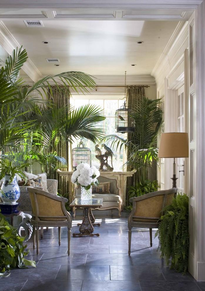 Растения в интерьере в тропическом стиле