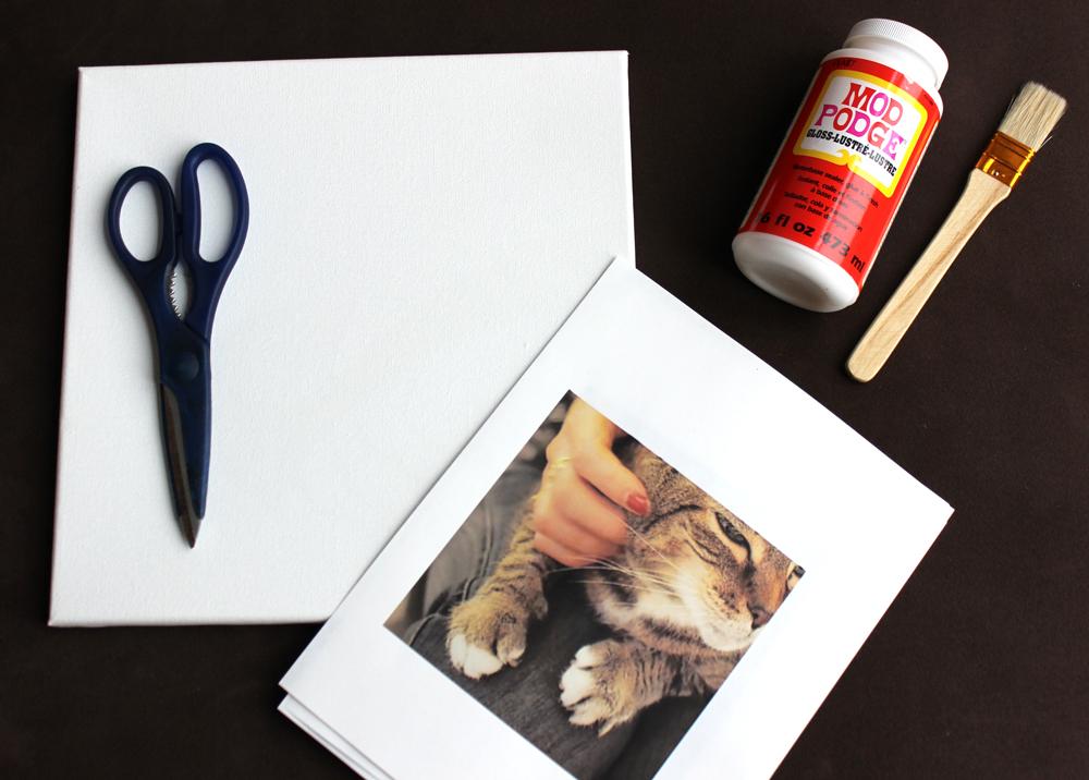 Материалы для создания картины из фотографий