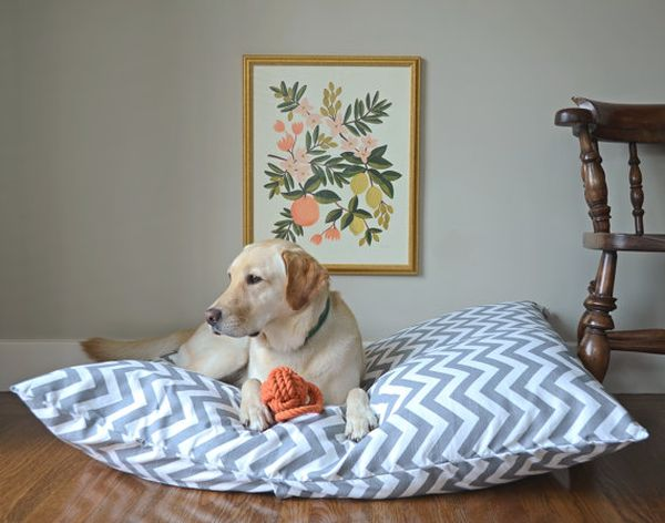 Удивительная кроватка для домашнего питомца