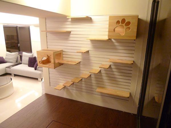 Изображение - Мебель для животных Furniture-for-pets-19