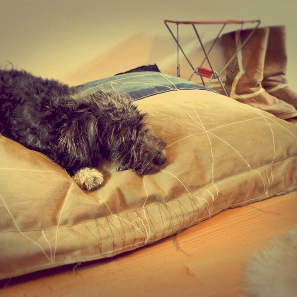 Изображение - Мебель для животных Furniture-for-pets-24