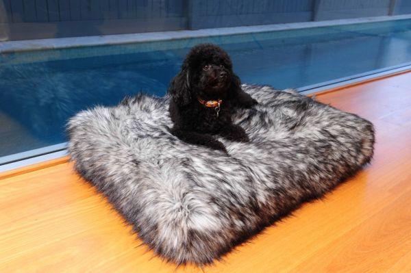 Изображение - Мебель для животных Furniture-for-pets-30