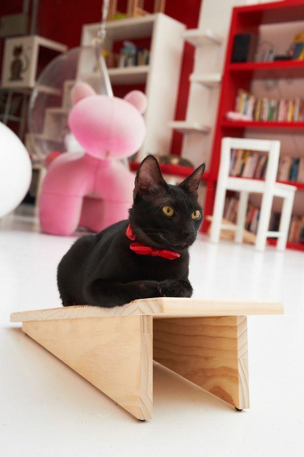 Изображение - Мебель для животных Furniture-for-pets-31
