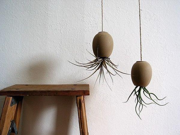 Подвесные керамические горшки с растениями
