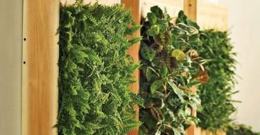 висячие сады, созданные с помощью контейнеров и цветочных горшков