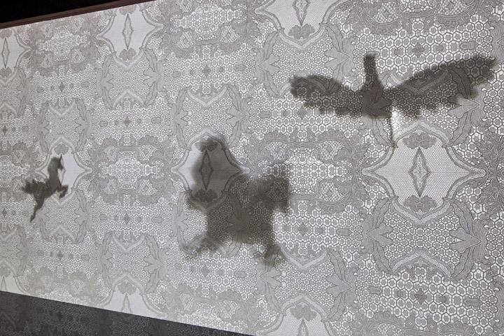Инсталляция из тени