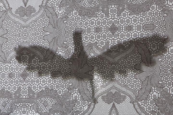 Тень птицы на ткани