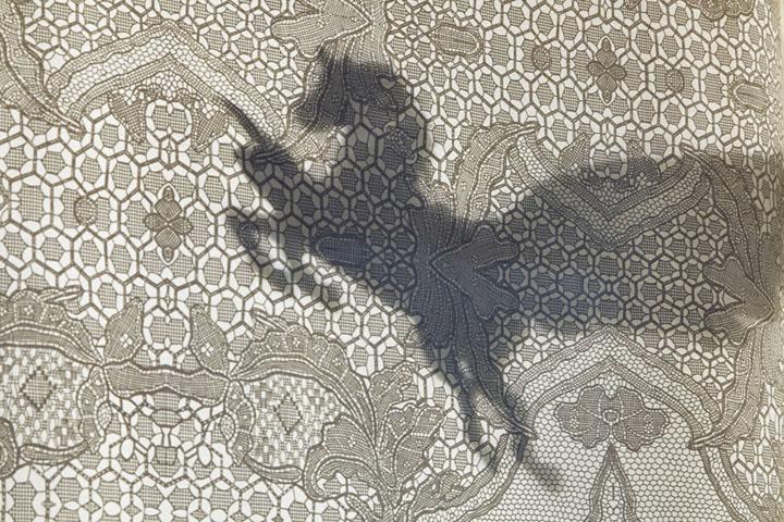 Тень коня на ткани