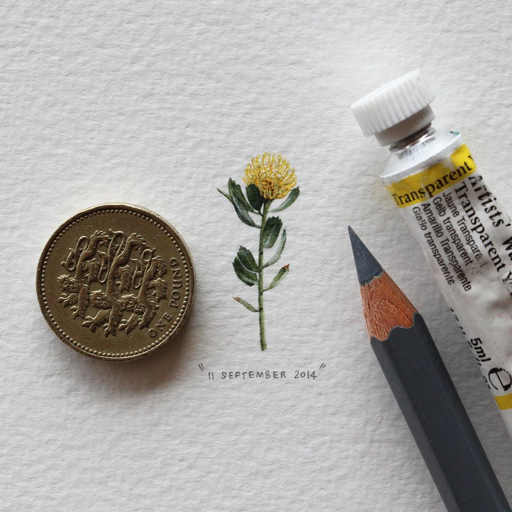 Рисунок цветка в миниатюре