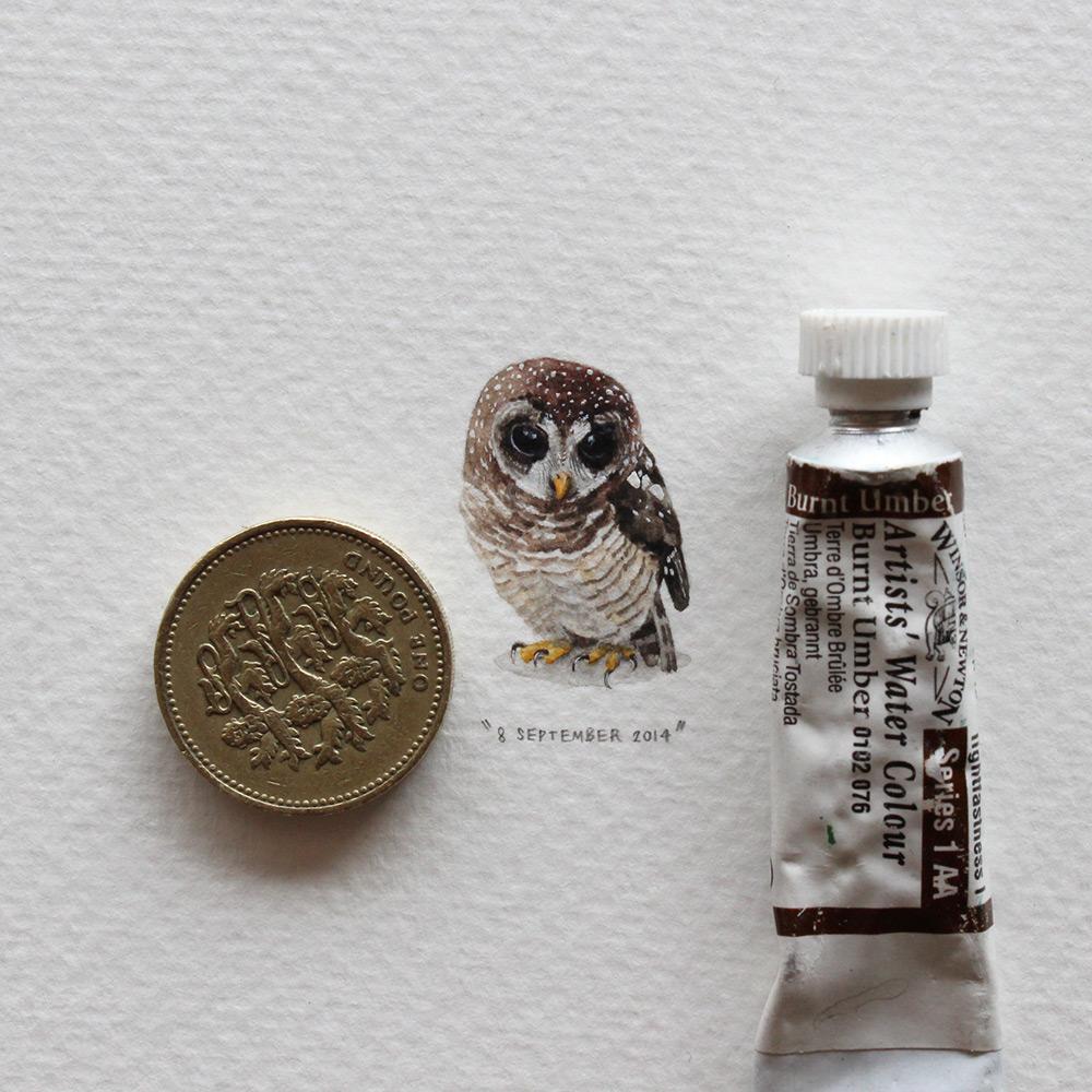Рисунок совы в миниатюре