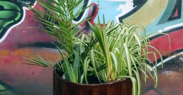 Архитектурное строительство с растениями