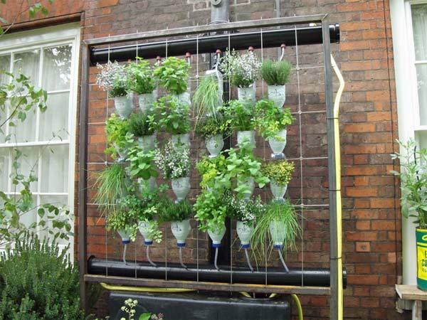 Подвесной сад из пластиковых бутылок