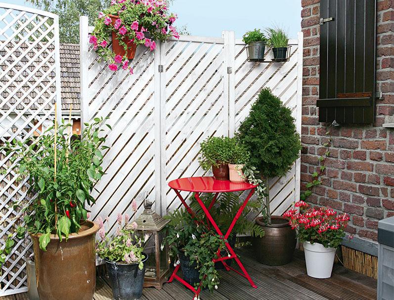 Шикарная ширма с весящими растениями