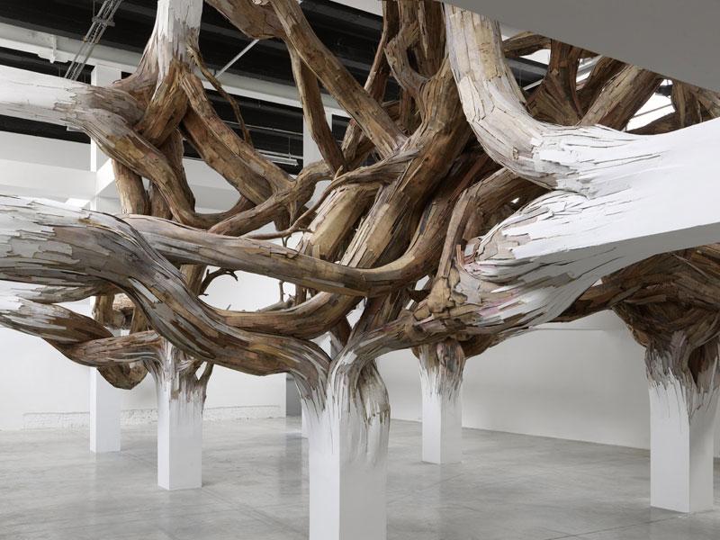 Запутанное и невероятное переплетение веток и белых массивных колонн