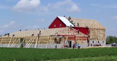 Кадры из видео Скота Миллера о слаженном строительстве сарая
