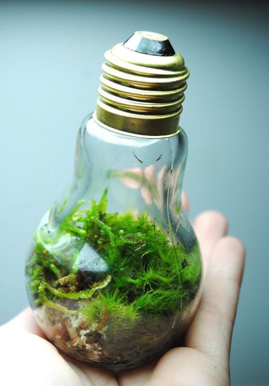 Креативная лампочка