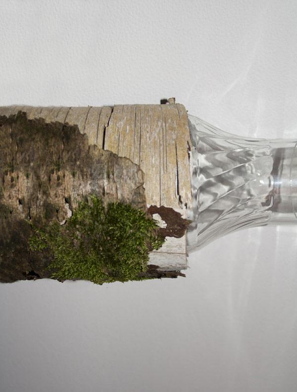 Креативная лампа из бобровой сказки