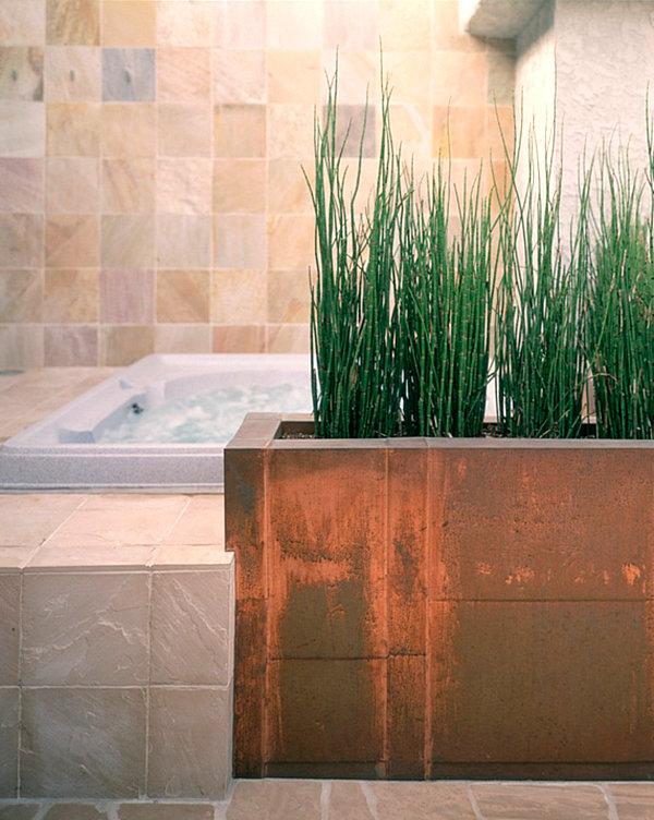 Best bathroom plants