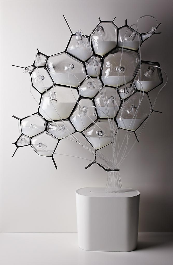 Креативный Bio-Light concept от концерна Philips