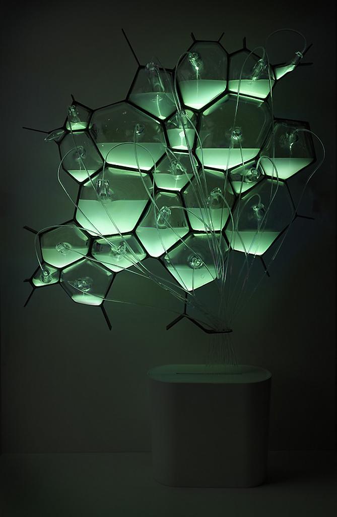 Необычный Bio-Light concept от концерна Philips