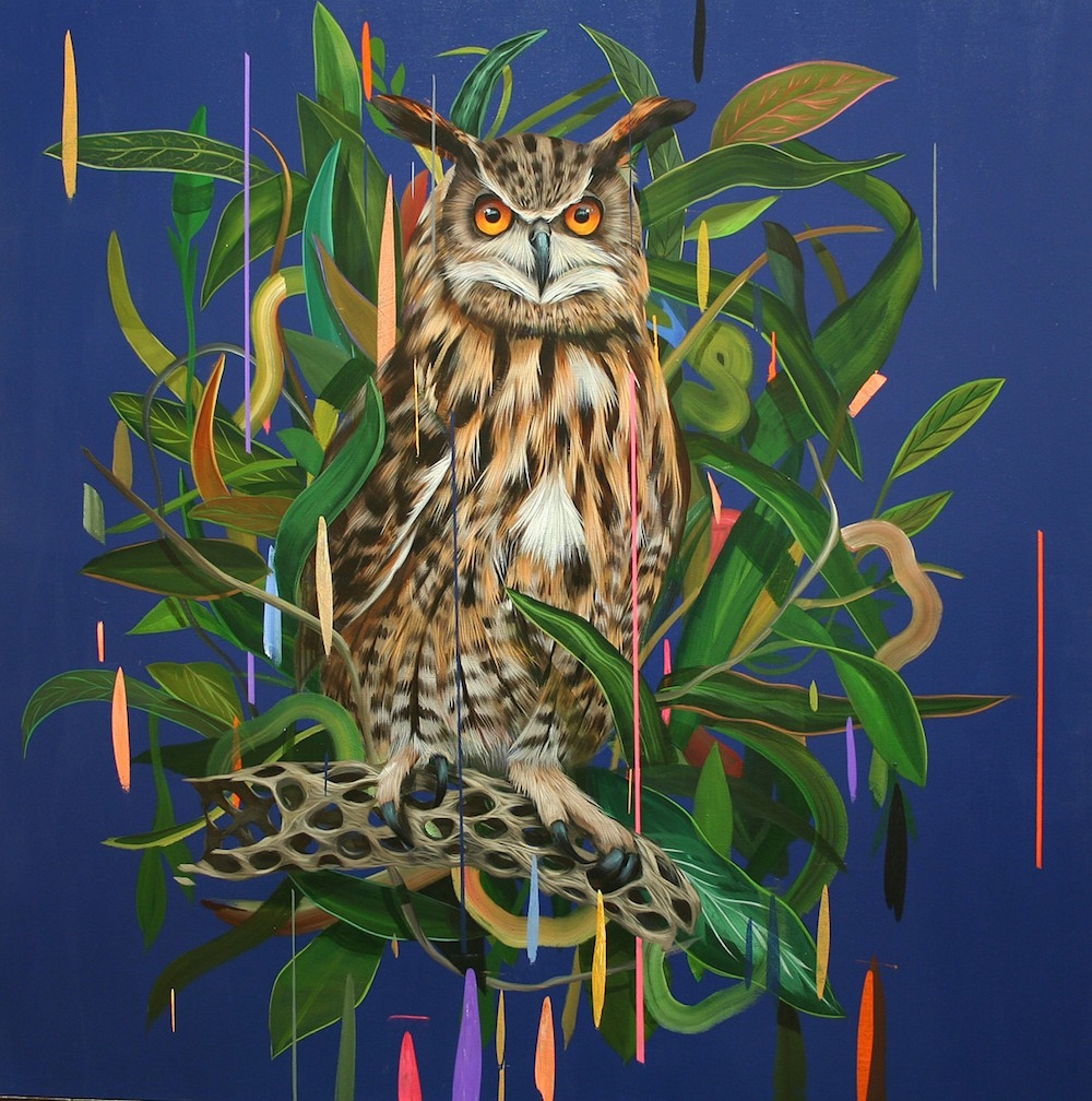 Красочные рисунки птиц из новой коллекции Фрэнка Гонсалеса