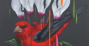 На грани фантазии и реализма: красочные рисунки птиц из новой коллекции Фрэнка Гонсалеса
