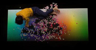 Клеменс Хабихт: новая сложная головоломка из 5000 кусочков