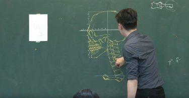 Анатомические рисунки от Бен-Цюань Чанга: дидактические шедевры на классной доске