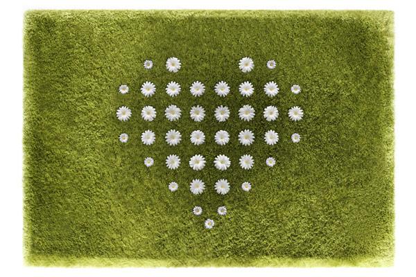 Ромашки в форме сердца на ковре Daisy Garden от Joe Jin Design Company Ltd