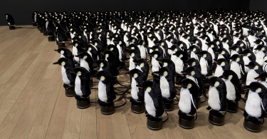«Пингвин» – интерактивное зеркало от Даниэля Розина