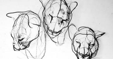 Проволочные скульптуры Давида Оливейры