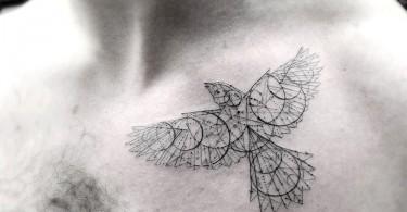 Геометрические текстуры доктора Ву в нательных изображениях живой природы