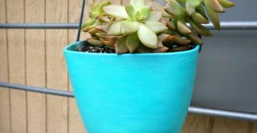 Цветочный вазон с зелёным растением во внутреннем дворе дома