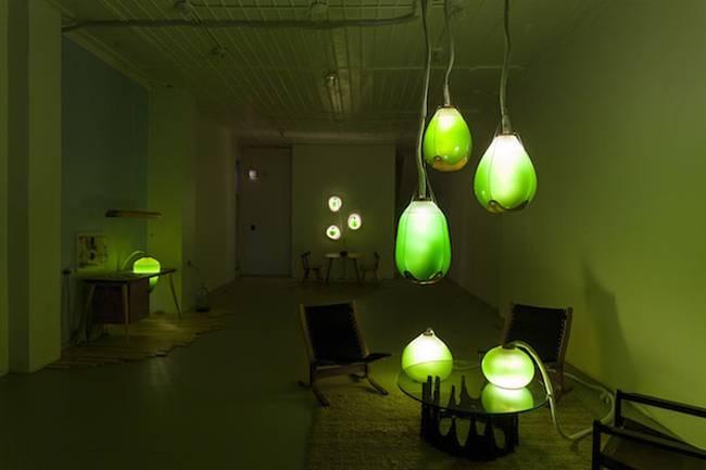 Живая мебель с водорослями для освещения