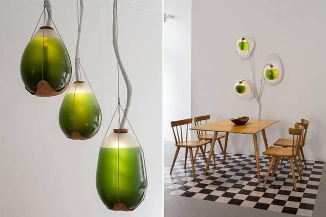 Живая мебель с водорослями. Оригинальные композиции