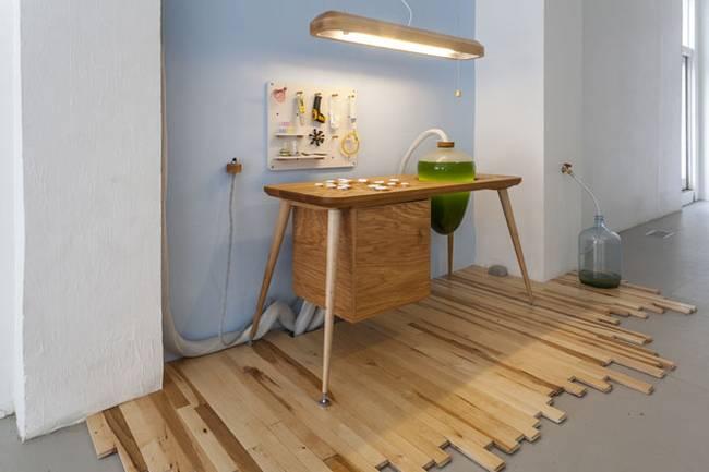 Живая мебель с водорослями: контроль за жизнью водорослей