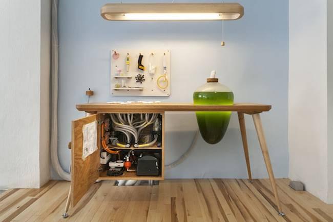 Живая мебель с водорослями: устройство системы жизнеобеспечения