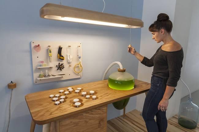Живая мебель с водорослями: панель управления